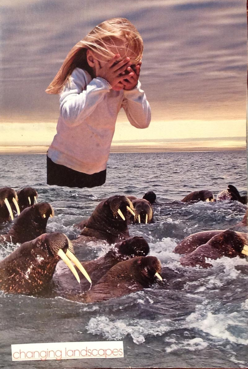 Changing landscapes, a collage of a girl in the ocean with walruses